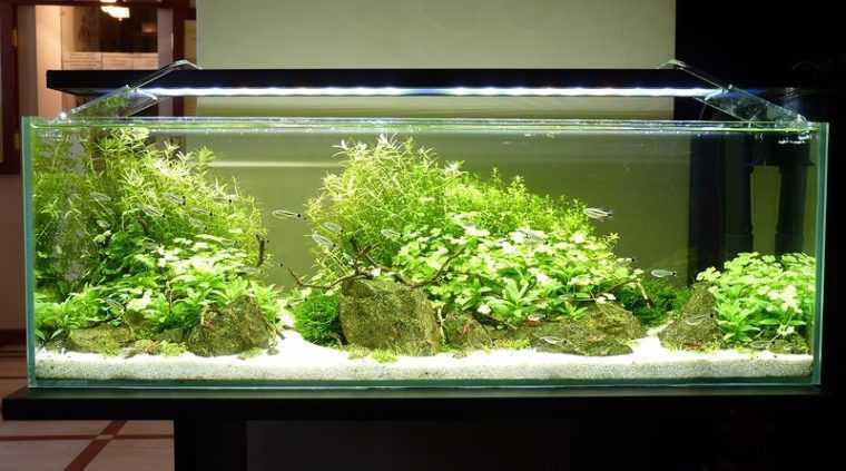 LED подсветка аквариума