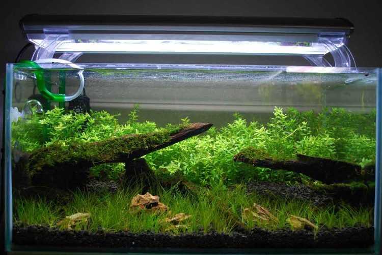 Светодиодная подсветка аквариума
