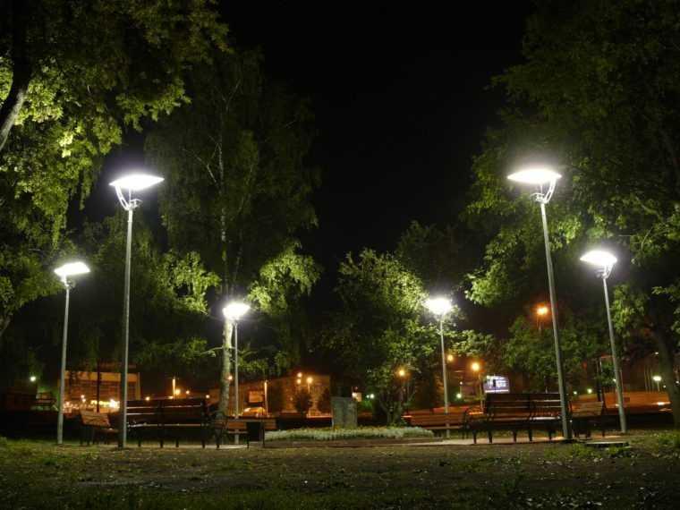 Заливающее ландшафтное освещение парка