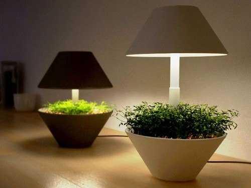 Светильник-абажур с комнатным растением