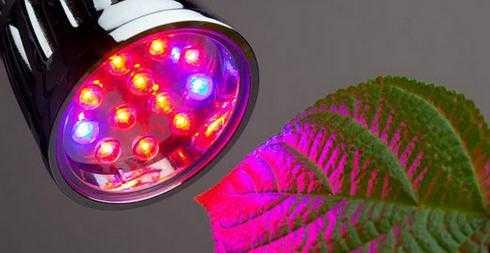 лампа для освещения теплиц