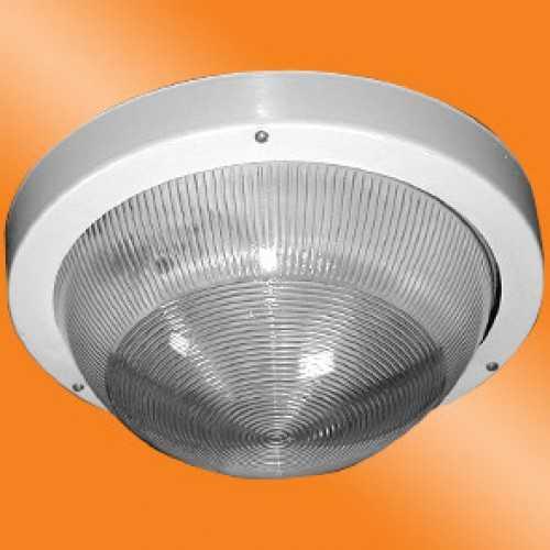 Светильник категории НПП 03-100-001 Селена 1